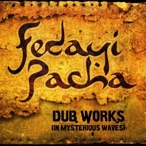 11912-dub-works-mysterious-waves-lun-09282009-1944